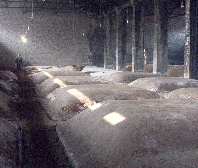 白酒发酵区